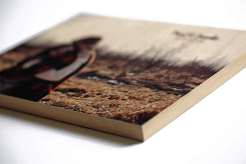 Printed Wood Bison Ilrated Cover